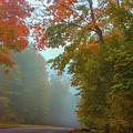 Misty Autumn Road by Art Spectrum