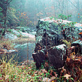 Misty Chopawamsic Creek Autumn Day by Thomas R Fletcher