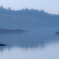 Misty Dawn At Glengarriff by John Perriment