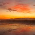 Misty Dawn#1 by Irwin Barrett