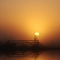 Misty Daybreak by Joachim G Pinkawa