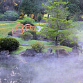 Misty Garden by Gary Wilson