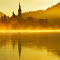Misty Lake Bled At Sunrise by Ian Middleton