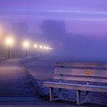 Misty Morning Boardwalk by Bill Pevlor