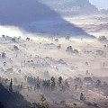 Misty Morning by Gusti putu  Suarsana