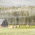Misty Morning Haybales by Patti Deters