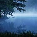Misty Morning by Joyce Huhra