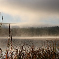 Misty Morning by Linda Russell