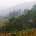 Misty Morning On The Farm by Thomas R Fletcher