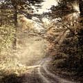 Misty Mountain Road by Jeff Folger