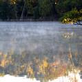 Dark Shoreline Frames Misty Fall Reflections On Jamaica Pond by Giora Hadar