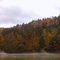 Misty River by Pat Turner