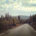 Misty Roads by Ingvild Nymoen Bragstad