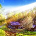 Misty Spring Morning by Debra and Dave Vanderlaan