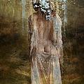 Misty Woods by Ali Oppy
