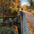 Mitford Bridge Over River Wansbeck by David Head