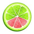Mixed Lemon by Munir Alawi