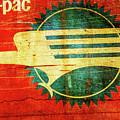 Mo-pac Caboose  by Toni Hopper