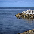 Mobile Bay 4 by Earl Johnson