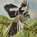 Mockingbird Landing by Linda Brody