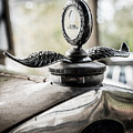 Model A Ford Hood Ornament by Alicia Collins