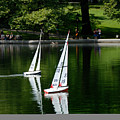 Model Boats Central Park New York by Amy Cicconi