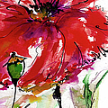 Modern Floral Poppy Pods 3 by Ginette Callaway