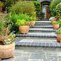 Modern Suburban House With Succulent Garden Hayward California 34 by Kathy Anselmo