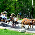 Mohonk Carriage Tour by Ed Weidman