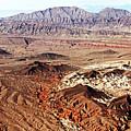 Mojave Desert Magic by Debbie Oppermann