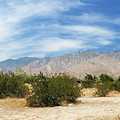 Mojave Pan 2 by Chuck Shafer