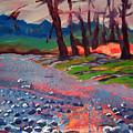 Molalla River Shore 7 by Pam Van Londen
