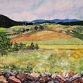 Mole Hill In Summer by Judith Espinoza