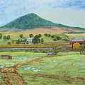 Mole Hill Panorama by Judith Espinoza