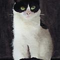 Mollee by Lynn Hansen