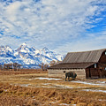 Molten Barn And Tetons 4 by Jack Chamberlin