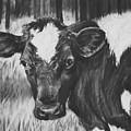 Momma Cow by Janae Lehto