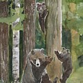 Momma With 4 Bear Cubs by Patricia Ricci