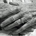 Mommas Hands by D Hackett