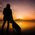 Mom's Best Friend by Luis Guanzon