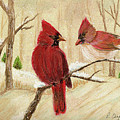 Mom's Favorite Redbirds by Robin Chaffin