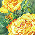 Mom's Golden Glory by Lori Taylor