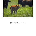 Moms Watching by Fred Lassmann