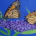 Monarch Butterflies On Buddleia Flower by Karen Jane Jones