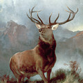 Monarch Of The Glen by Sir Edwin Landseer