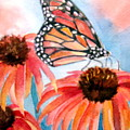 Monarch by Pat Vickers