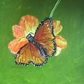 Monarch by Tabitha Brown