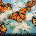 Monarchs by Cynthia Westbrook