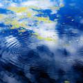 Monet Like Water by Marilyn Hunt