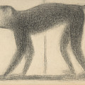 Monkey by Georges-Pierre Seurat